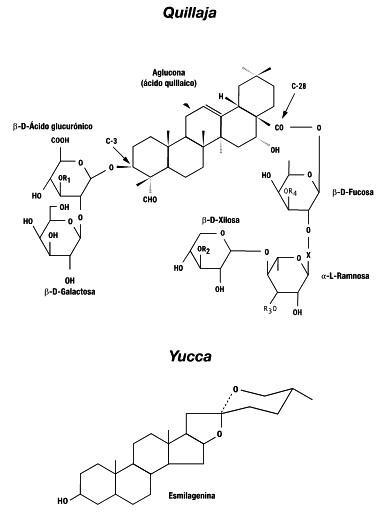 El Uso de Saponinas en Acuicultura